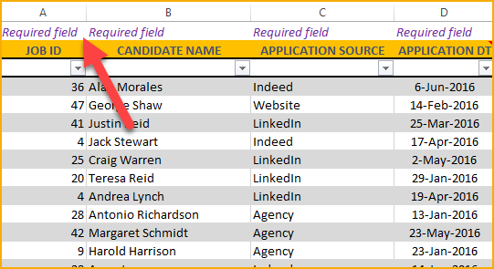 Required Fields in Applications sheet